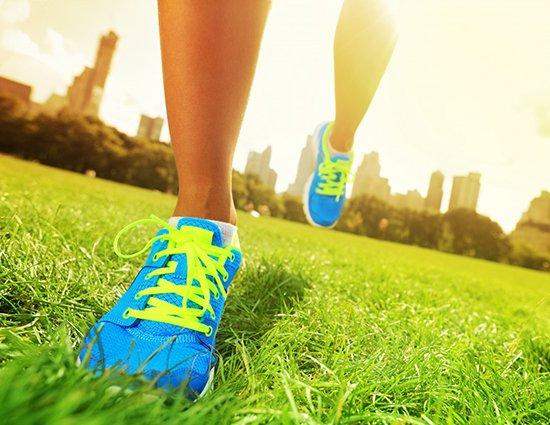 Health & Wellness Experts